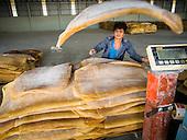 Thai Rubber Farmers in Crisis