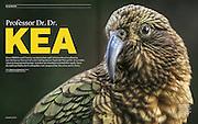 GEO magazine, German issue No. 01/2015