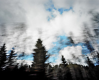 Deadwood.<br /> Foto: Svein Ove Ekornesvåg