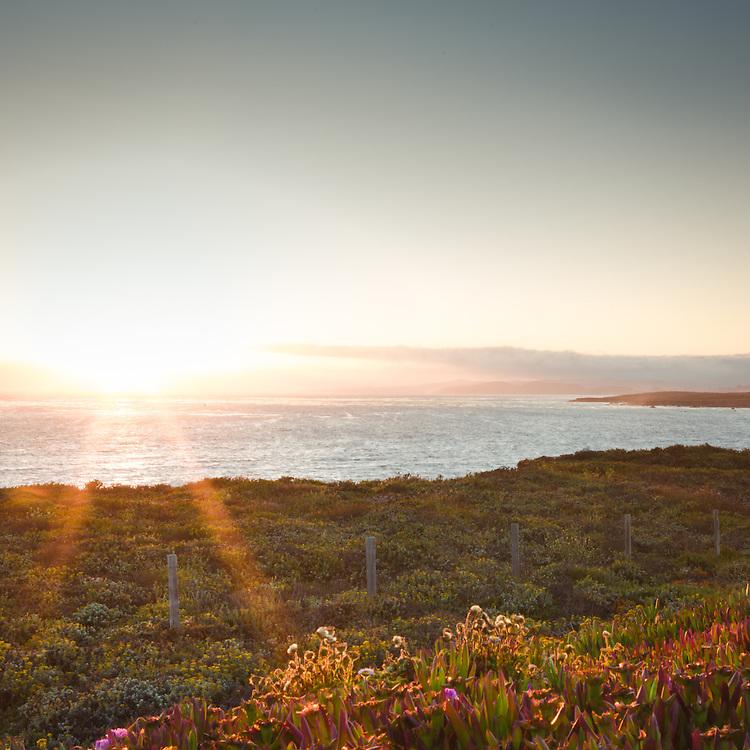 Pacific Coast, Seascape No.4
