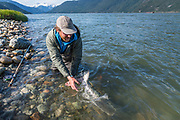 David Page releases a tidewater chinook back to the Dean River boca.