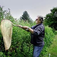 Nederland, Amsterdam , 21 juli 2010..Wijnand Heitmans, evolutionair bioloog in het Flevopark op zoek met netje naar miniscule sprinkhanen..Foto:Jean-Pierre Jans
