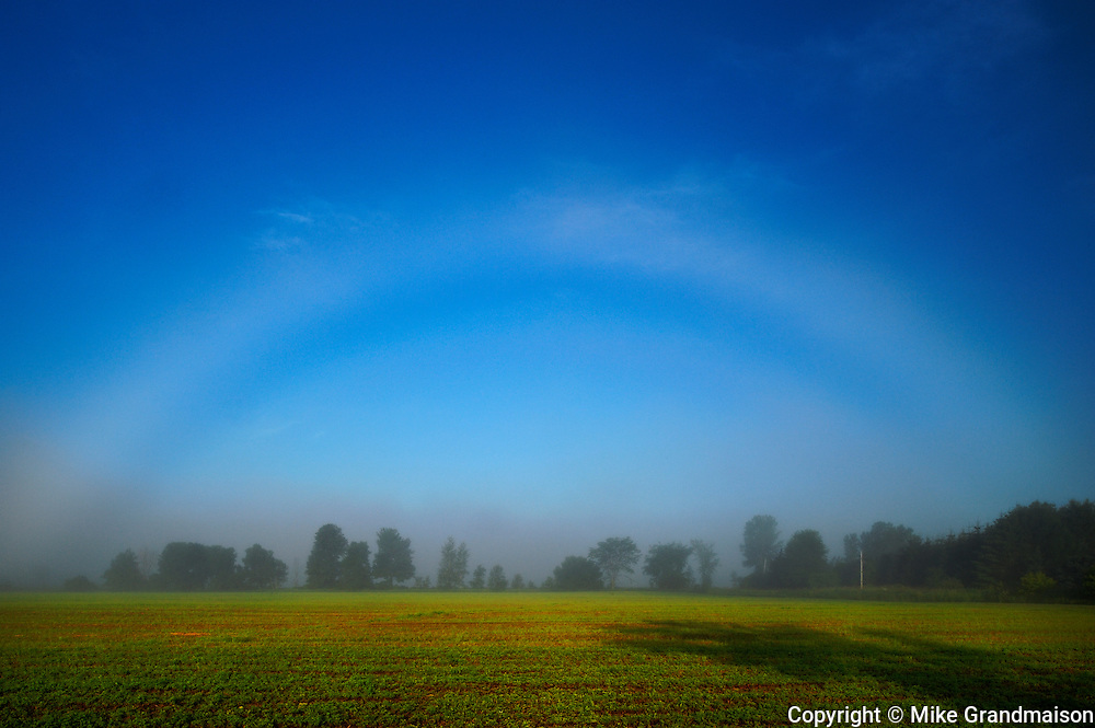 Fogbow or white  <br /> Bourget<br /> Ontario<br /> Canada