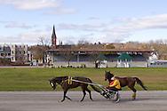 Goshen, New York - Standardbred horses train at Goshen Historic Track on Nov. 4, 2012.