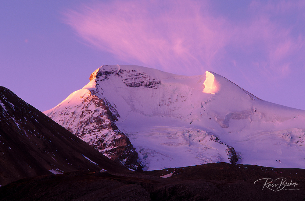 Pink dawn light on Mount Athabasca, Columbia Icefields area, Jasper National Park, Alberta, Canada.