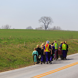 Bird-in-Hand, PA, USA - March 24, 2016: Amish school children walk along a rural road on a warm spring day in Lancaster County, Pennsylvania.