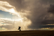 Queensland, Australia. Storm formation in the sky. Photo by Lorenz Berna