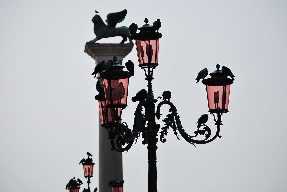 St. Mark's - Venice