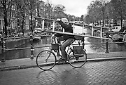 Man carrying ladder while riding bike in Amsterdam.