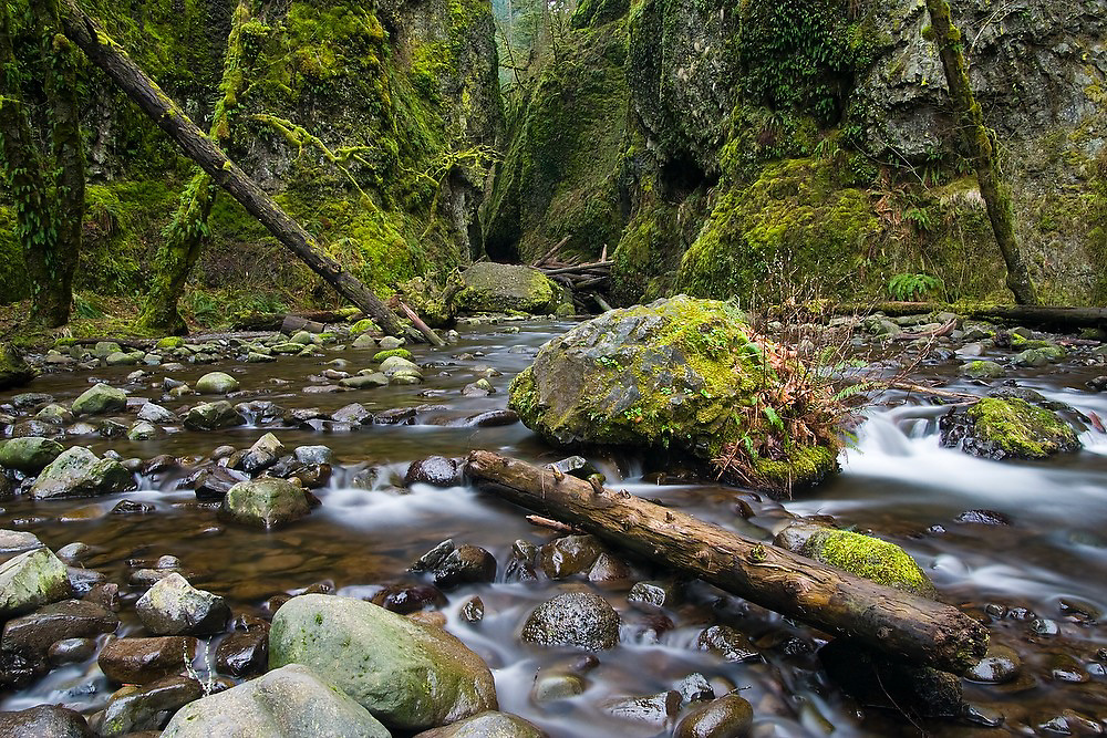 Water streams out from the entrance into Oneonta Gorge, a tight mossy slit cut into the bedrock, in Oregon's waterfall-ridden Columbia Gorge.