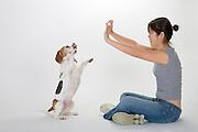 dog; canine; portrait; portraiture; beagle, woman, girl