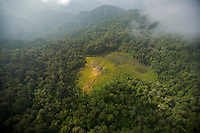 """Aerial view of the Foja Mountains rain forest.<br />Natural clearing is the """"bog"""" area used as a landing site for the expedition.  Bog camp was located in the forest at the upper right edge of the clearing."""