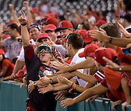 The Angels' Mike Trout celebrates with fans after the Halos clinched the American League West Wednesday night at Angel Stadium.
