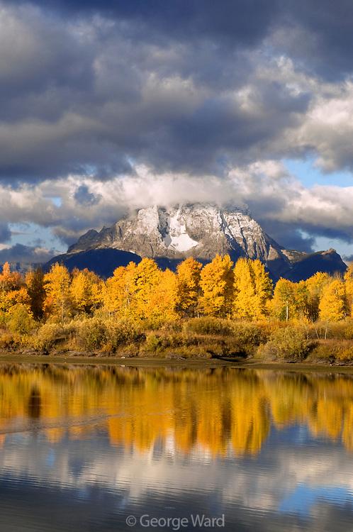 Clearing Skies, Aspen, Mount Moran and the Snake River, Grand Teton National Park, Wyoming