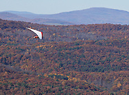 Ellenville, NY - A hang glider soars above autumn trees  on Oct. 25, 2009.