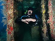 USS Spiegel Grove shipwreck, Key Largo