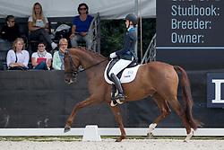 van der Velden Kim, NED, Guadeloupe-Beau<br /> World Championship Young Dressage Horses <br /> Ermelo 2016<br /> © Hippo Foto - Dirk Caremans<br /> 28/07/16