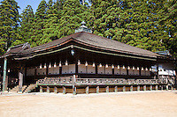 """The name 'Miedo' literally means """"hall of the honorable portrait"""". Enshrined inside this building is a portrait of Kobo Daishi that was painted by his disciple Shinnyo. This treasured portrait is surrounded by ten other portraits of Kobo Daishi's disciple. Originally this hall was used by Kobo Daishi to enshrine his Buddhist images and for his personal spiritual training. These two facts make Miedo the most important and sacred building in Danjo Garan..This hall has been closed to the public for many years with the exception of only a few select people that are permitted to enter on special occasion."""