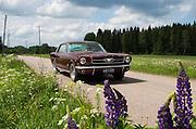 Ford Mustang<br /> Petri Juola Photography<br /> petrijuola.com