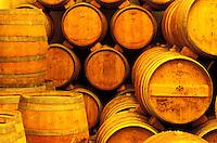 Italie - Toscane - Province de Florence - region du Chianti - Cave à vin à Badia a Passignano - Bouteilles. // Italy. Tuscany. Chianti area. Bottle of Wine.