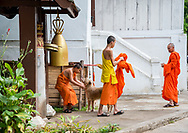 Monks at Wat Xienghtong in Luang Prabang.