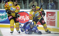 23.01.2011, Arena Ice Fever, Zagreb, CRO, EBEL, KHL Medvescak Zagreb vs EV Vienna Capitals, im Bild . EXPA Pictures © 2010, PhotoCredit: EXPA/ nph/ Pixsell +++++ ATTENTION - OUT OF GERAMANY / GER, CROATIA / CRO, SWEDEN / SWE +++++
