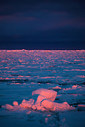 Sunset on Arctic Sea Ice, Fram Strait, between Greenland and Svalbard, September 2009. In August 2012, Arctic sea ice hit a record minimum - this will affect weather and the global climate, as the ice cap reflects much of the sun's solar energy back into to space. With sea ice melting away, the dark water below absorbs more solar energy, which in turn causes more melting.
