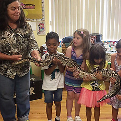 "50 Cent releases a photo on Instagram with the following caption: ""Man I don't know what they trying to teach these kids \ud83e\udd26\u200d\u2642\ufe0f with a big ass snake. SMH you know Dora explorer gonna just say it's fine and let my baby do it. \ud83d\udc40I'm a city boy, We running \ud83c\udfc3\ud83c\udffd from shit like that.  LOL"". Photo Credit: Instagram *** No USA Distribution *** For Editorial Use Only *** Not to be Published in Books or Photo Books ***  Please note: Fees charged by the agency are for the agency's services only, and do not, nor are they intended to, convey to the user any ownership of Copyright or License in the material. The agency does not claim any ownership including but not limited to Copyright or License in the attached material. By publishing this material you expressly agree to indemnify and to hold the agency and its directors, shareholders and employees harmless from any loss, claims, damages, demands, expenses (including legal fees), or any causes of action or allegation against the agency arising out of or connected in any way with publication of the material."