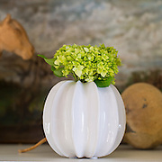 Product photography for P. Allen Smith in Little Rock, Arkansas. Product photography for P. Allen Smith in Little Rock, Arkansas.