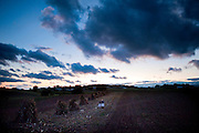 Three  Old Order Mennonite girls talk in a field at sunset. Old Order Mennonites are a branch of the Mennonite church. It is a term that is often used to refer to those groups of Mennonites who practice a lifestyle without some elements of modern technology.