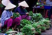 Women selling leafy green veges in Hoi An street market.