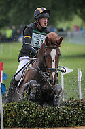 POSSIBLE MISSION ridden by Tom Rowland taking part in the Equitrek CCI*** cross country on day three of the Bramham International Horse Trials 2017 at Bramham Park, Bramham, United Kingdom on 11 June 2017. Photo by Mark P Doherty.