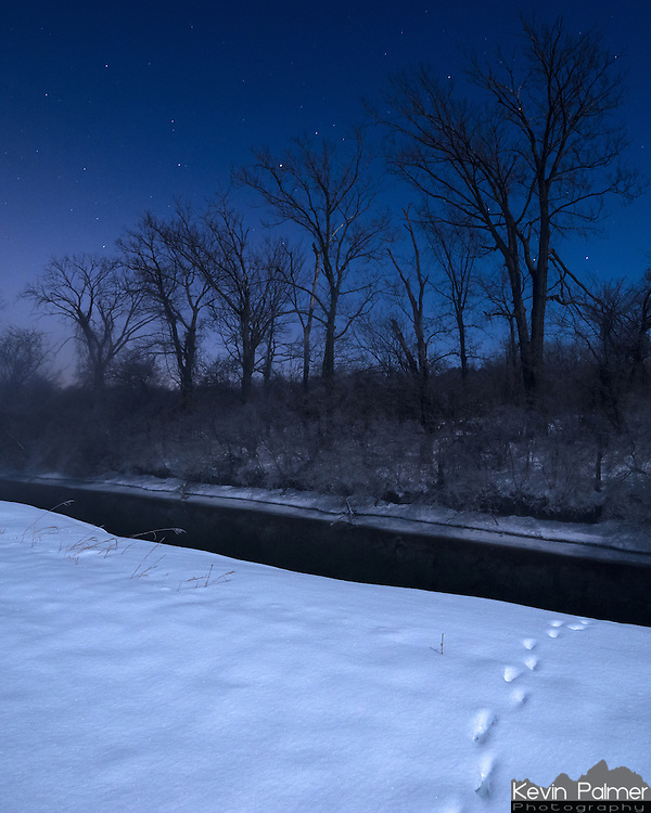 I'm not sure what animal made these tracks in the snow, but I think it was a coyote. The bright moonlight was illuminating the snow covered landscape on this clear night. Despite the subzero temperatures, this creek was not frozen.<br /> <br /> Date Taken: February 11, 2014