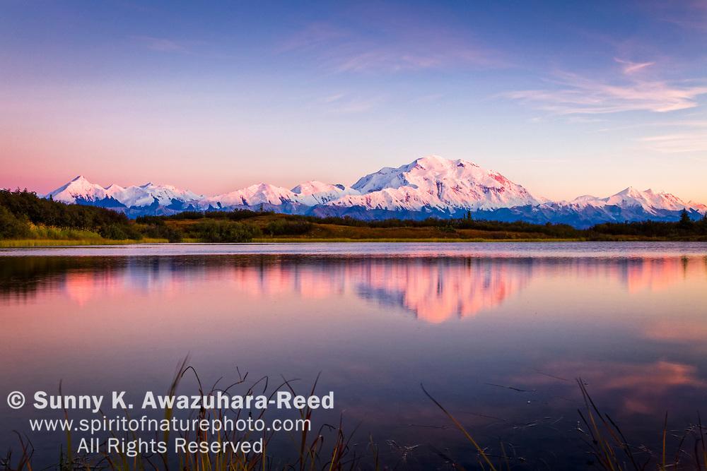 Rose color sunset glow on Mt. Denali (McKinley) reflects on Reflection Pond, Denali National Park & Preserve, Interior Alaska, Autumn.