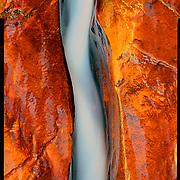 Left Fork of the North Creek, Zion National Park. 4x5 Kodak Ektar 100. photo by Nathan Lambrecht