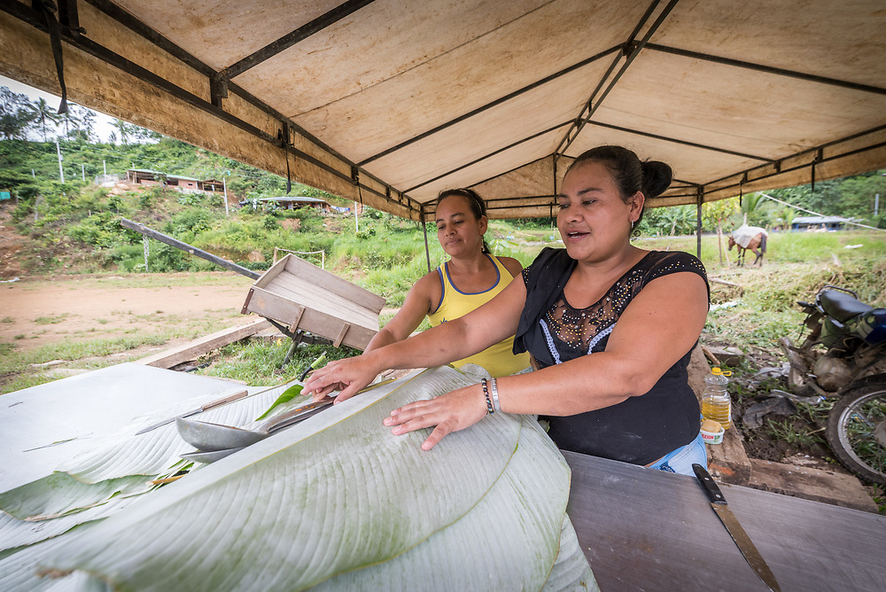 16 November 2018, San José de León, Mutatá, Antioquia, Colombia: Rosa (right) and Mayerlis (left) prepare a meal of sarapa - rice and chicken wrapped in a Cachibou leaf - for 80 community members in San José de León. Following the 2016 peace treaty between FARC and the Colombian government, a group of ex-combatant families have purchased and now cultivate 36 hectares of land in the territory of San José de León, municipality of Mutatá in Antioquia, Colombia. A group of 27 families first purchased the lot of land in San José de León, moving in from nearby Córdoba to settle alongside the 50-or-so families of farmers already living in the area. Today, 50 ex-combatant families live in the emerging community, which hosts a small restaurant, various committees for community organization and development, and which cultivates the land through agriculture, poultry and fish farming. Though the community has come a long way, many challenges remain on the way towards peace and reconciliation. The two-year-old community, which does not yet have a name of its own, is located in the territory of San José de León in Urabá, northwest Colombia, a strategically important corridor for trade into Central America, with resulting drug trafficking and arms trade still keeping armed groups active in the area. Many ex-combatants face trauma and insecurity, and a lack of fulfilment by the Colombian government in transition of land ownership to FARC members makes the situation delicate. Through the project De la Guerra a la Paz ('From War to Peace'), the Evangelical Lutheran Church of Colombia accompanies three communities in the Antioquia region, offering support both to ex-combatants and to the communities they now live alongside, as they reintegrate into society. Supporting a total of more than 300 families, the project seeks to alleviate the risk of re-victimization, or relapse into violent conflict.