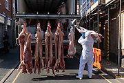 A meat industry worker hauls heavy pork carcasses while delivering fresh meat to a local butchers, on 10th August 2020, in Aylsham, Norfolk, England.