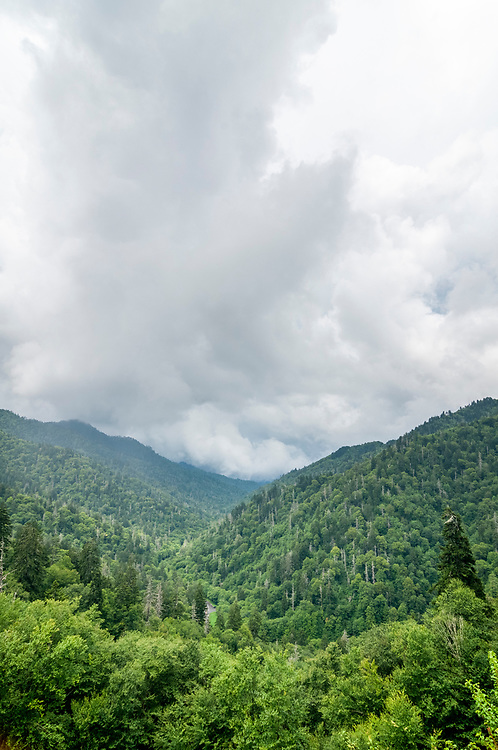 A storm moves across the Morton Overlook in Great Smoky Mountains National Park in Gatlinburg, Tennessee on Thursday, August 13, 2020. Copyright 2020 Jason Barnette