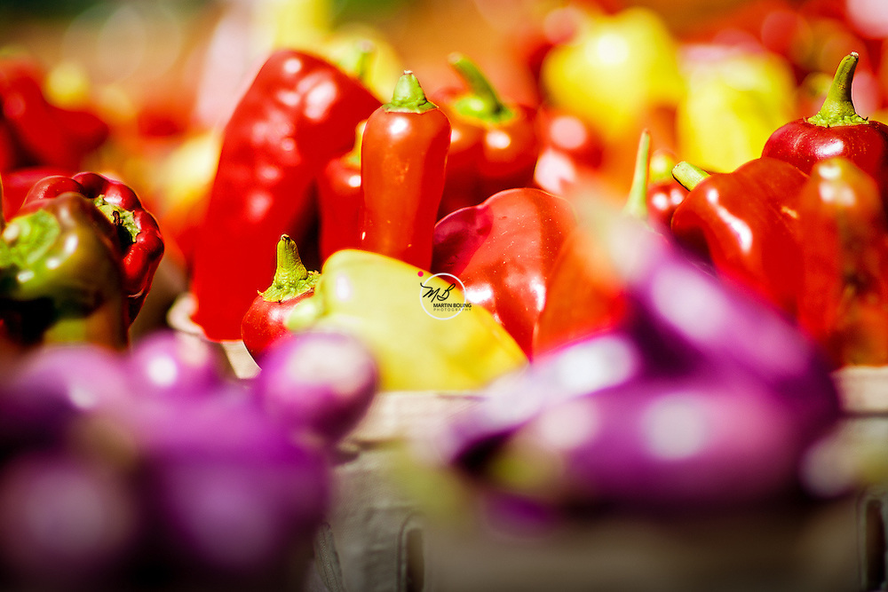 Peppers at Summer Farmers Market