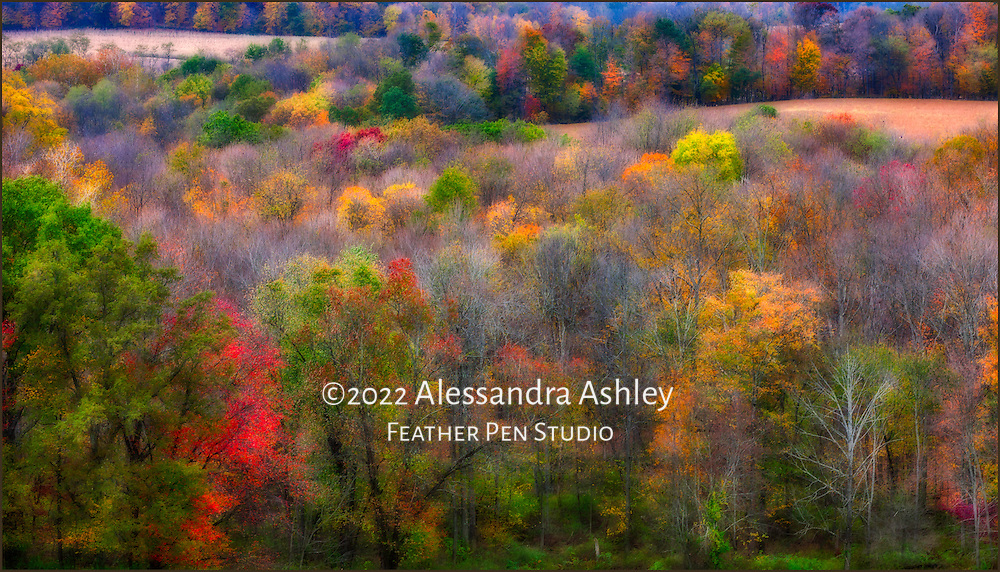 Panoramic view of the rolling hills of central Ohio, with fall foliage in a spectrum of colors.  Soft-glow double exposure montage.