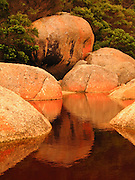 """Orange lichen and rocks reflect in the tannin-stained water of Tidal River at Wilson's Promontory National Park in the warm glow of sunset light in the Gippsland region of Victoria, Australia. Natural tannins leached from decomposing vegetation turn the water brown. Drive two hours from Melbourne to reach Wilson's Promontory, or """"the Prom,"""" which offers natural estuaries, cool fern gullies, magnificent and secluded beaches, striking rock formations, and abundant wildlife."""