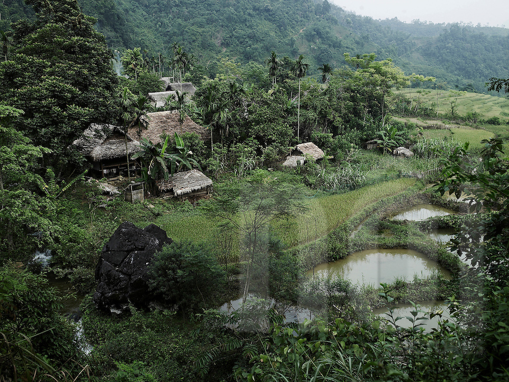 Small village in a valley built among a luxuriant vegetation. Jungle surround the hamlet. Stilt houses are made of wood and palm leaves. Rice fields and ponds separe the hilltribe living area from the wild forest. Pu Luong area, Hoa Binh province, Vietnam, Asia.