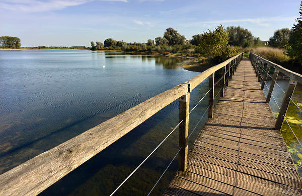 Nederland, Ooij, 4-10-2012De bizonbaai is een recreatieplas, waterplas, meertje, baai, langs de rivier de Waal. Onderdeel van staatsbosbeheer.Foto: Flip Franssen/Hollandse Hoogte