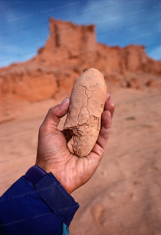 One of several egg forms discovered by the author of Hunting Dinosaurs at the Flaming Cliffs in the Gobi Desert of Mongolia.