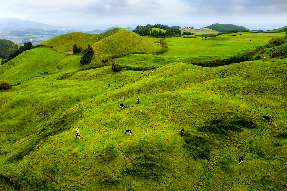 Craters of Sao Miguel Island, Azores