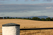 cereal, crop, harvest, farming, louth, ireland, irish, agriculture, arable, harvest, barley, cooley, mountans,