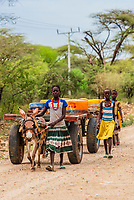 Girls using donkey carts to carry water containers,  Southern Nations Nationalities and People's Region, Ethiopia.