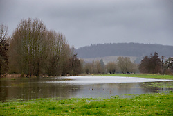 A flooded meadow lies adjacent to the Thames at Aston, Berkshire, as heavy rains in the catchment area and saturated ground causes the river to rise to within inches of bursting its banks. April 02 2018.