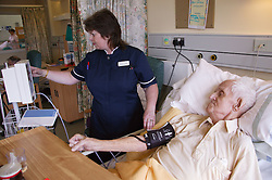 Nurse with disability taking patient's blood pressure on hospital ward,