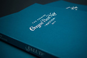 SALUD Auction 2017